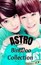 Astro BinWoo Collection by marojehca_ASTRO