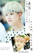 The Kitten From Block B by choi_seungchoke