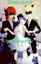 Miraculous ladybug and catnoir: Three boys by Nicoles_Loves_Cake
