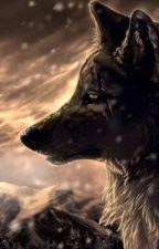 Werewolf Moon by Spiritwolf1101