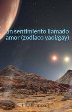un sentimiento llamado amor (zodiaco yaoi/gay) by LisaFranco3