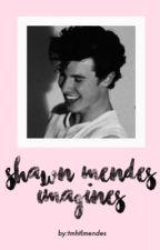 Shawn Mendes Imagines by KiwiIrwiin