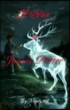 Il ritorno di James Potter  by Mandy398