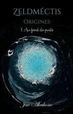 Zeldméctis, Origines : Tome I - Au fond du puits [BoyxBoy] by Jae_Akahone