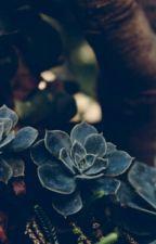 Стихи by Soffira-99