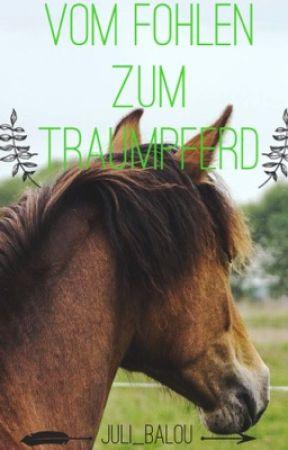 Vom Fohlen zum Traumpferd  by Juli_Balou
