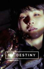 my destiny -n.g,v.k- Hiatus by damboswife