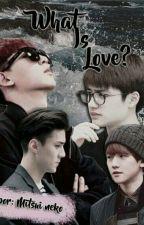 What is Love? [ChanSoo|SeBaek] by MitsuiN3ko