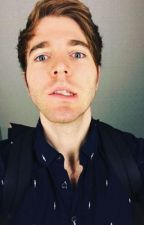 This New You - Shane Dawson X Reader by Roybella