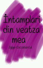 Intamplari din veatza mea by Windoze