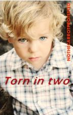 Torn In Two *COMPLETED, EDITING* ('Don't leave...we need you sequel' 5SOS) by NOTHECARROTPROTESTED