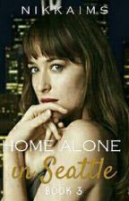 Home Alone in Seattle (Final Book in the Trilogy)-COMING IN 2018 by NikkiAims