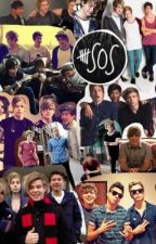 5 Seconds of Summer  Preferences by ReadBooks_BlowMinds