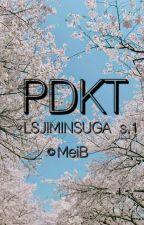 PDKT (LSJIMINSUGA) (Minyoon) by gulakusuga