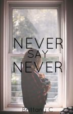 Never Say Never (Book 2 of 4) (Justin Bieber Love Story) by brattany07