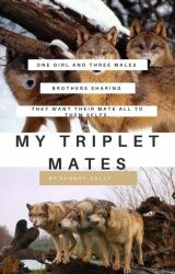 My Triplet Mates by kenndy_kelly_