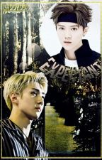 Expectant ♠HunHan♠  by Happuppy