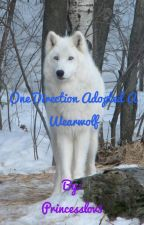 One Direction Adopted A Wearwolf by Princesslov3