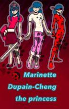 Marinette Dupain-Cheng the princess  by MiraculousLadybug0