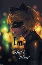 I'm Chat Noir by pinyponlandia12345