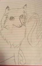 My Drawing Book by o0o_Erin_Riddle_o0o