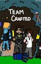 book of team crafted x reader smut by NileaFallen