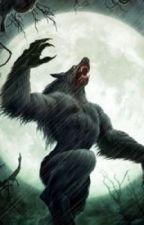 Mystery of Wolf Blood High by Mysterywriter888