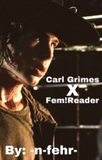 Carl Grimes x Reader Book 2 by -Swimmer-