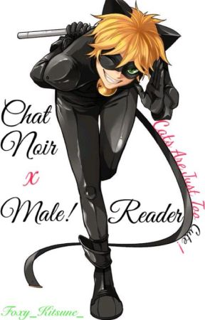 Chat Noir/ Adrien x Male! Reader [Cats Are Just Too Cute