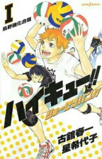 Haikyuu!! Light Novels (Haikyuu!! Shōsetsuban
