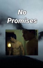 No promises by emojacks