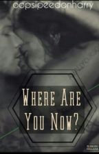 Where Are You Now? •larry• [complete] by oopsipeedonharry