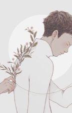 [series][seokjin] jinderella by jinedible