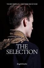 The Selection - Larry Stylinson by drugsforhstyles