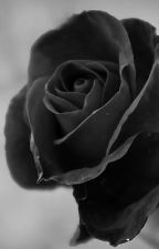 Black Rose || The Outtakes by Lavender-Violet
