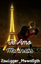Te Amo Marinette(One-Shot Miraculous Ladybug) by Zswagger_Moonligth