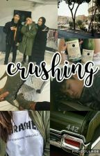 crushing|s.l by bitchjimin