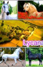 Lycana by Enmanen