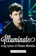 Shawn Mendes lyric [Illuminate] by baelooksgood