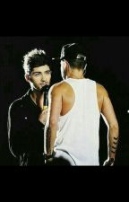 The Encyclopedia of Zayn and Liam by thegayenaz