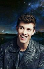 Shawn Mendes Facts  by csillamponimegbts
