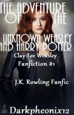 The Adventure of the Unknown Weasley and Harry Potter by DarkPheonix_12