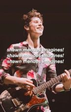 Shawn Mendes Imagines by sunkcssed