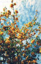 SOPHROSYNE [BTS] by sunshine_ts