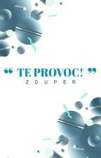 『Te provoc!』Ⅱ by Zduper