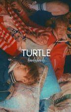 turtle | jjh  by sugamarket