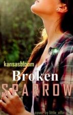 Broken Sparrow (the new and improved?) (on hold...again..I know...) by kansasbloom