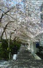 Di Bawah Pohon Sakura by angelaftracta