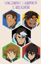 Voltron various X Reader by CosmicLeopard