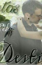Juntos Pelo Destino by Dream_Divergent